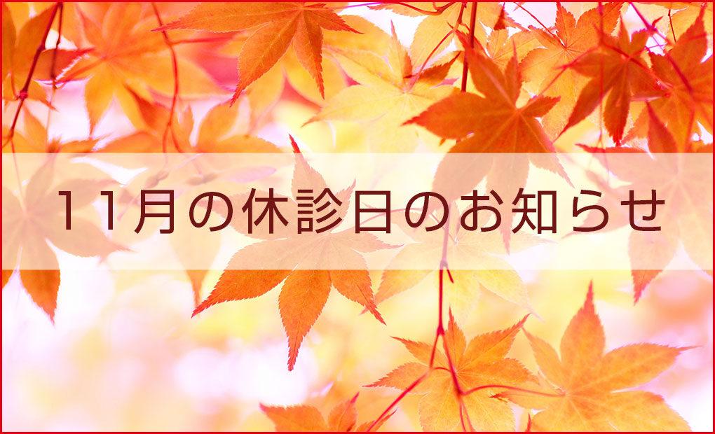 11月24日(土)の休診のお知らせ